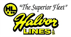 Halvor - SVD Web Supporter